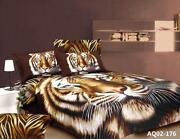 Tiger DOONA Cover