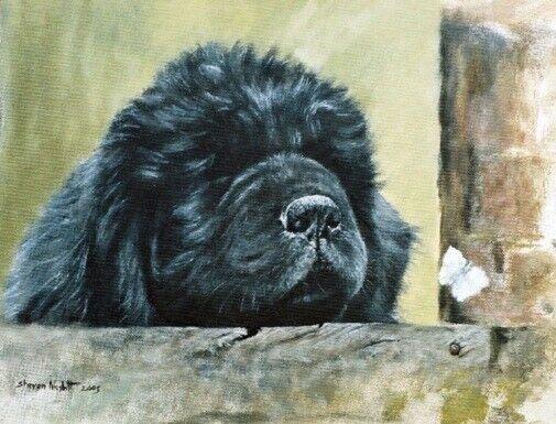 Newfoundland Dog Limited Edition Art Print A Brief Encounter by Steven Nesbitt*