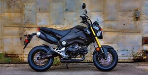 LOOKING TO BUY A HONDA GROM
