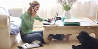Work from Home! Easy Hours! learn New Skills! Great Commission