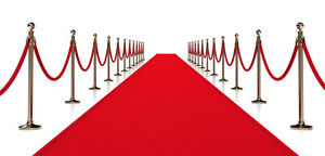 CUSTOM BANNERS/BACKDROP PACKAGE/STEP&REPEAT-LOWEST PRICE Stratford Kitchener Area image 2