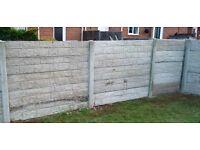 Concrete fence panels