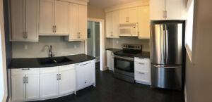 2 Bedroom Apartment in Downtown Guelph