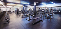 Rental Space for Independent Personal Trainers