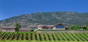 Spectacular Water View home with 5 acre Vineyard