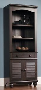 Library/Office Cabinet with doors and drawer