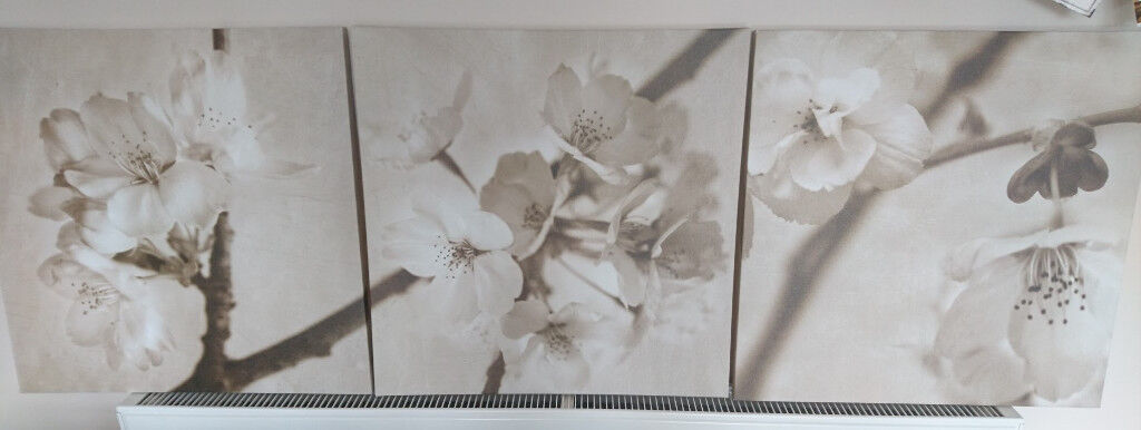 Ikea Canvas Flower Picture Set Of 3 Cherry Blossoms In