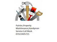 Painter And Decorating,Property Maintenance,Handyman,floor covering,Building new extensions,