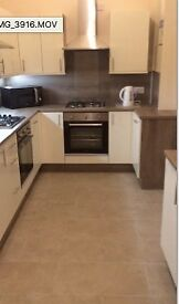 1 very spacious room in immaculate, friendly professional only house share