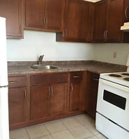 RENOVATED UNIT WITH UNDERGROUND PARKING - 1491 PILLETTE