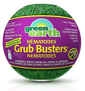 Grub Buster Nematodes from Home Depot
