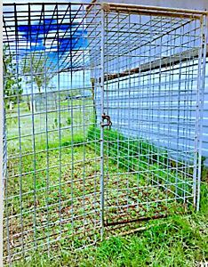 DOG CAGE FOR UTE - or TOOLS PORTABLE STEEL - 7 FT   - DOOR - $100 Logan Reserve Logan Area Preview