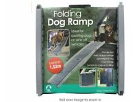 Dog Ramp for the car
