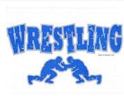 Wrestling Fabric
