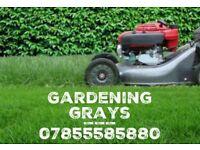 Gardener Gardening & Landscaping