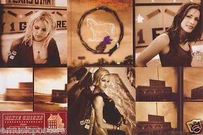 "DIXIE CHICKS ""HOME"" 2-SIDED U.S. PROMO POSTER - Classic Shots of the Girls!"