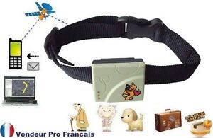 traceur tracker gps gsm geolocation chien chat personne. Black Bedroom Furniture Sets. Home Design Ideas