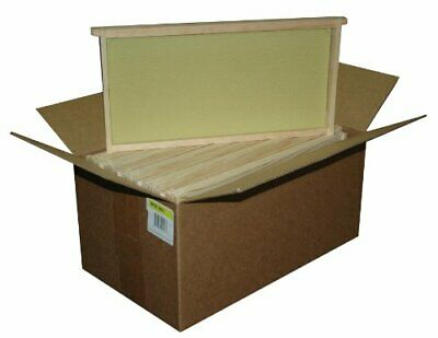Assembled Bee Hive Frame Waxed Natural Foundation Honey Box Beekeeping Supplies