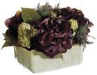 Hydrangea Houseplant Floral Décor