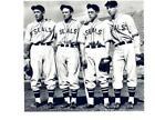 San Francisco Seals Baseball
