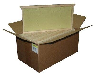10 Pack Assembled Bee Hive Frame Waxed Natural Foundation Honey Box Set Keep