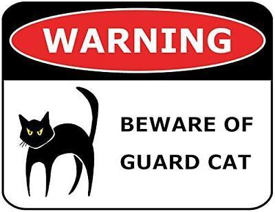 Beware Sign Beware Of Cat Sign Halloween Cat Decor ENSA1002975 Cat Sign