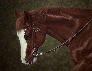 Pet Portraits by Ontario Canada Artist Colette Theriault
