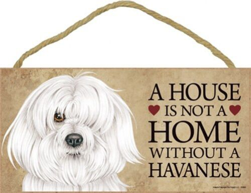 """A House is not a Home without a HAVANESE Dog Sign 5""""x10"""" NEW Cute Plaque USA S20"""
