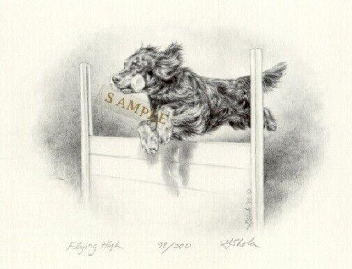 Gordon Setter Limited Edition Art Print by Georgia Cawley: Flying High #98*