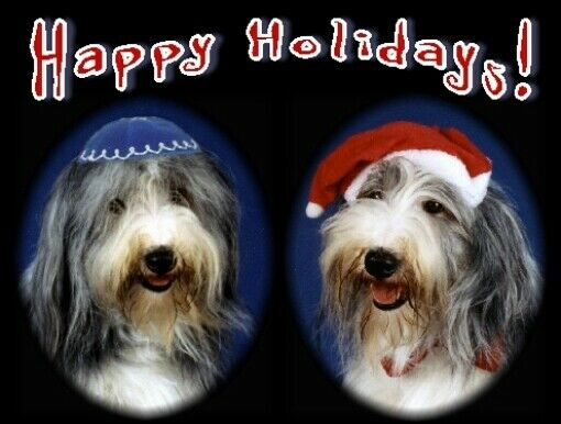 Pet Interfaith Christmas & Hanukkah Cards:Dog Old English Sheepdog