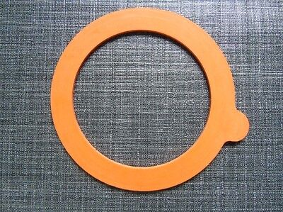 A Typical Rubber Ring for a Storage Jar