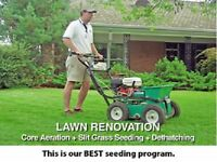 Thatch Removal Fertilizing Seed Aeration Lawn Care Landscaping