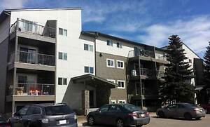 Hillview Estates Apartments - 1 Bedroom Apartment for Rent...