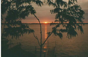 BREATHTAKING SUNSETS Kawartha Lakes Peterborough Area image 2