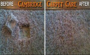 CARPET Re-Stretching, Repair & CARPET Installations too! Cambridge Kitchener Area image 2