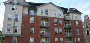 Downtown 1 and 2 Bedrooms For Rent