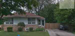 Bungalow for rent in Richmond HIll near Bayview Secondary School
