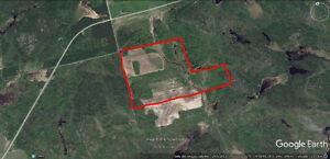 Terre à vendre St-Eugène-De-Guigues (Témiscamingue)