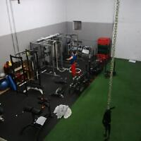 Celebrity Personal Trainer in West Island
