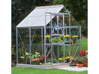 New unused Halls 6 x 4 Aluminium Greenhouse & Lacewing 2 shelf staging