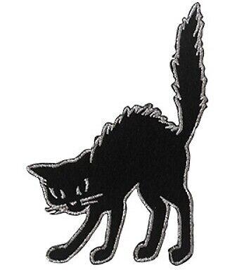 Cat Halloween 4