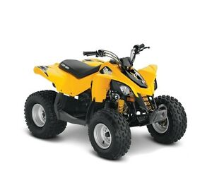 2015 Can-am DS 90 Youth ATV