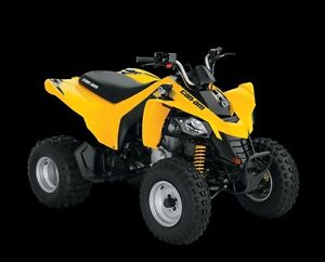 Can-am DS 250 Youth ATV