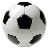 Mens soccer team looking for players