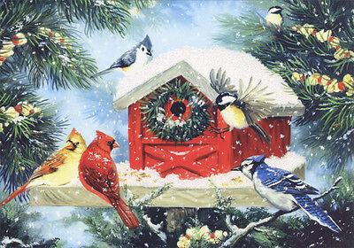 Christmas Bird Feeder - LPG Box of 14 Christmas Cards by LPG Greetings