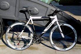 Brand New TEMAN PRO-3.0 aluminium 21 speed hybrid road bike + 1 year warranty bbnii