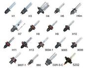 H7 HID Bulbs 55W