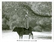 Harold Lloyd Photo