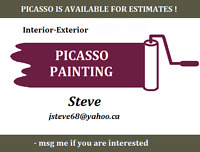 Picasso Professional Painting