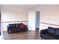Stunning 1 bed flat with rear Garden & 5 mins walk from station, easy access to Victoria Line